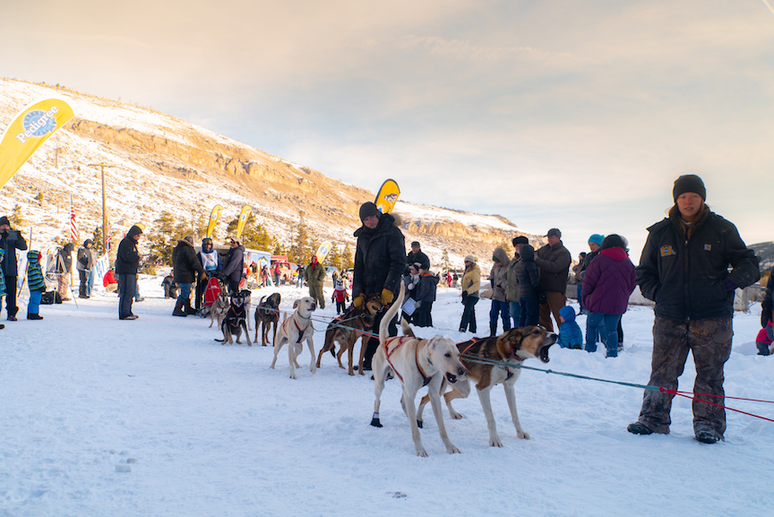 Stage Stop Sled Dog Race activities Feb. 4th in Lander