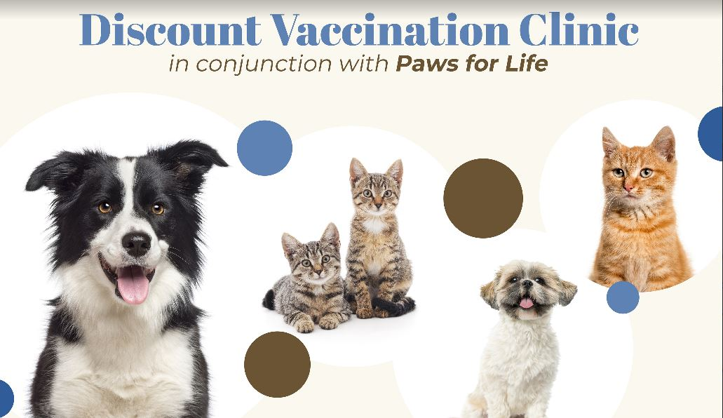 Discount Vaccination Clinic with the Stock Doc & Paws for Life