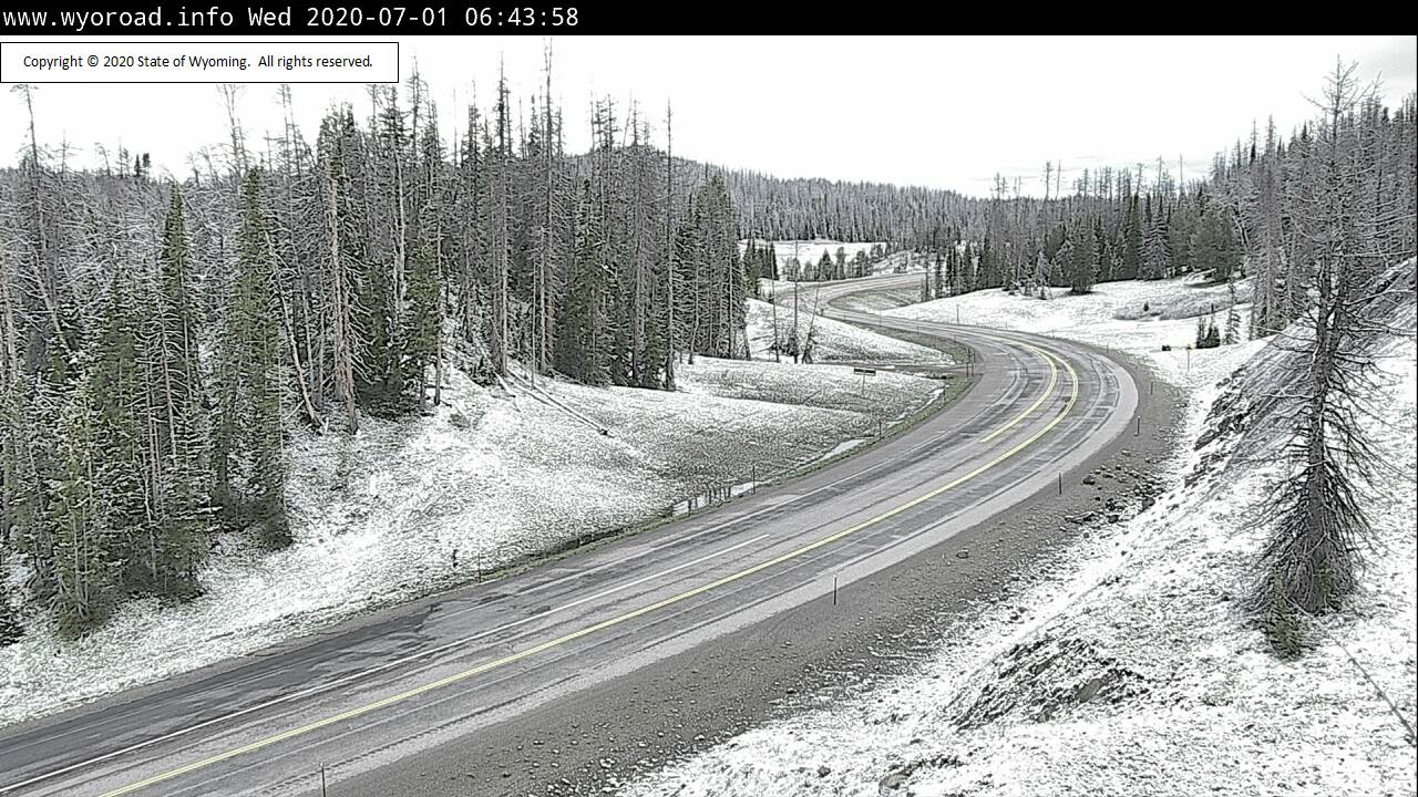 Christmas in July? Snow on Togwotee Pass overnight