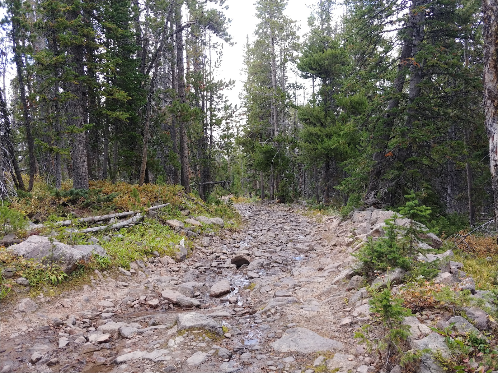 Shoshone Lake Road Opening to be delayed for improvements